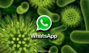 whatsapp-virus-300x178 whatsapp-virus